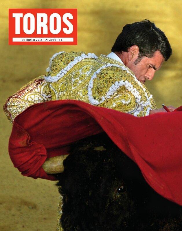 TOROS_2064