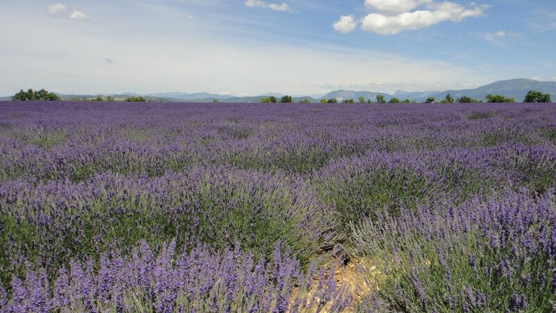2015-06-25 Dignes-Valensole 011