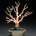 A coral branch and jade mounted jardinire. Late Qing dynasty