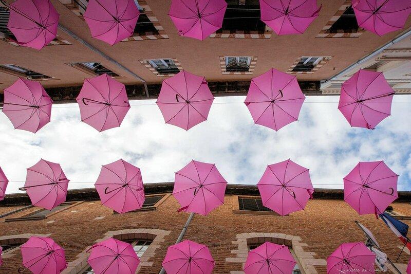 w_Parapluies roses Albi_20161002_1791