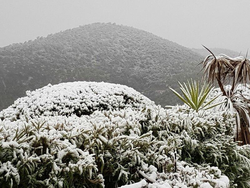 Neige aux collines bleues 4