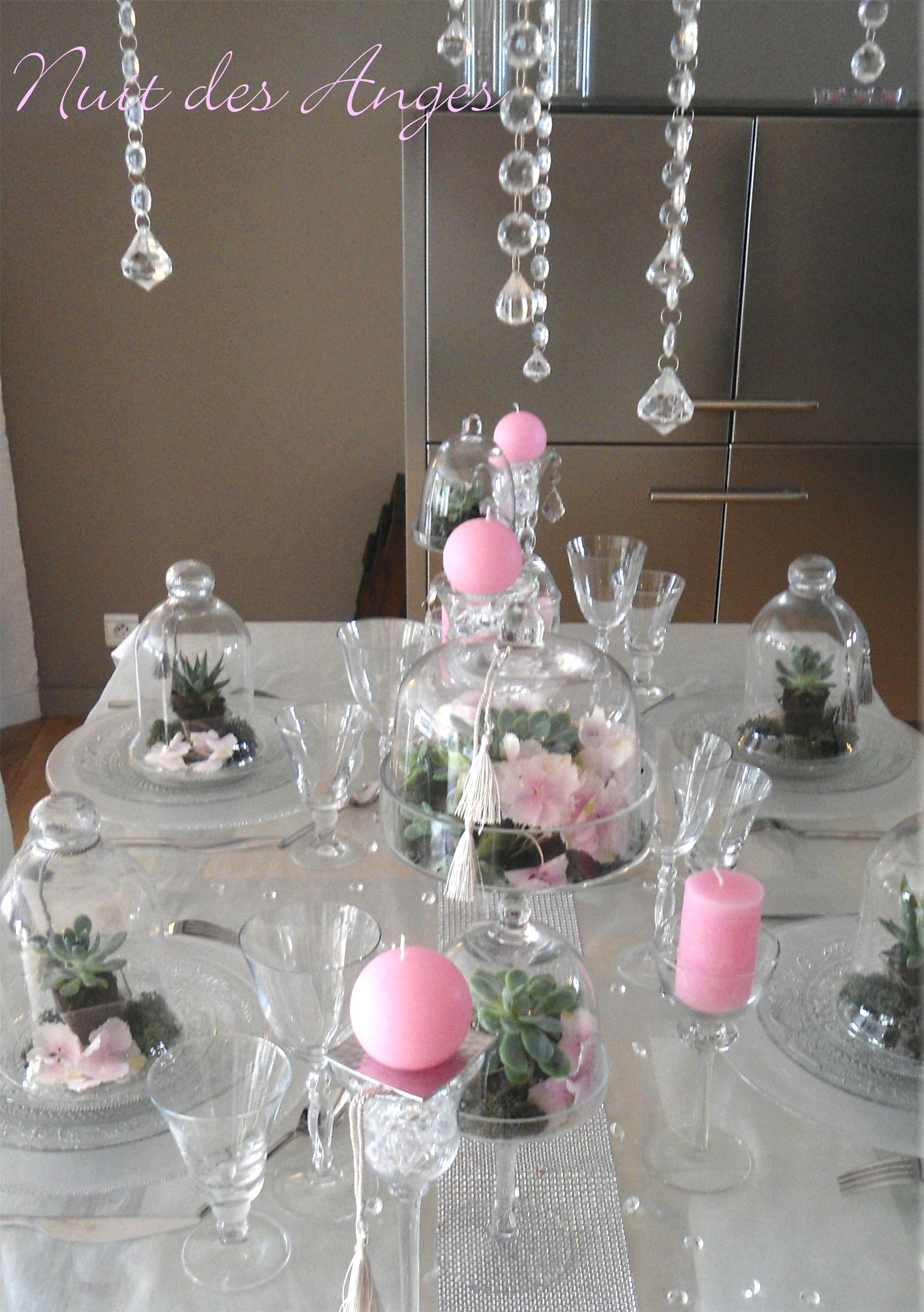 Nuit Des Anges D Coratrice De Mariage D Coration De Table Succulentes 001 Photo De D Coration