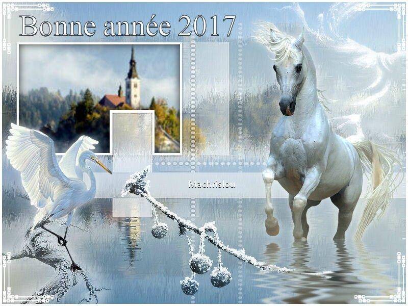 8 JANVIER 2011 LE CHEVAL BLANC VIP OK