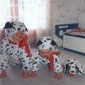 les 3 petits dalmatiens