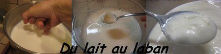 Du_lait_au_laban