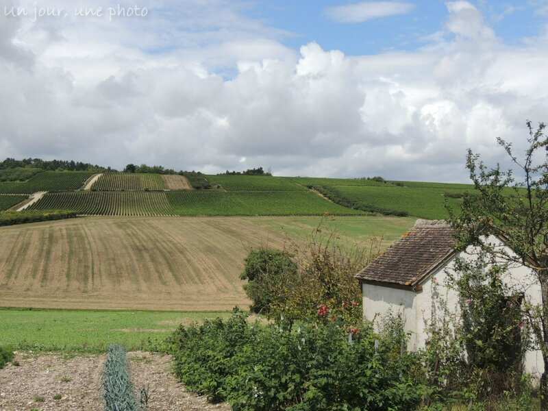 && Coulanges la Vineuse (6)
