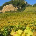 Vignes & Chateau Chalon sur rocher (3)