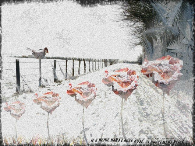 """le froid""... winter digital picture"