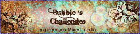 Bubble_s_Challenges