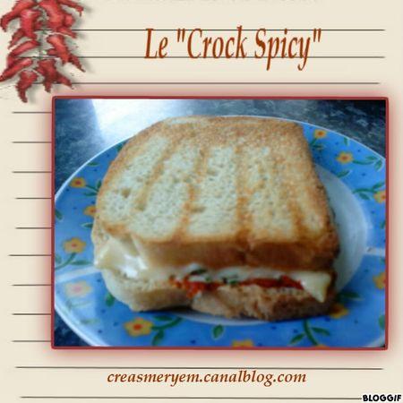 CREAS MERYEM RECETTE crock-spicy blog (1)