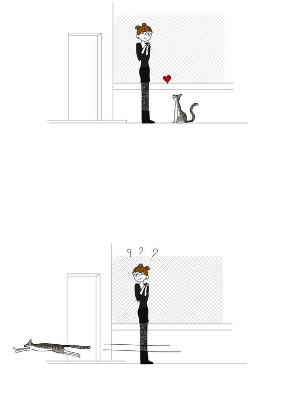 Neko_chien_1