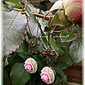 Boucles d'oreilles romantique vintage, rose et pistache