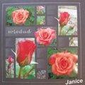 Janice 1