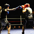 100-773-LE GALA DE BOXE DE GRAVELINES