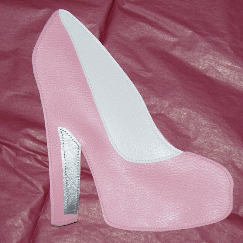 2014-c36-Trousse chaussure