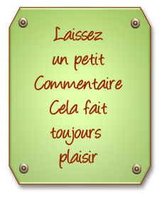 432937commentaire