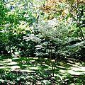 mon coup de coeur : le jardin de la Princesse Strudza