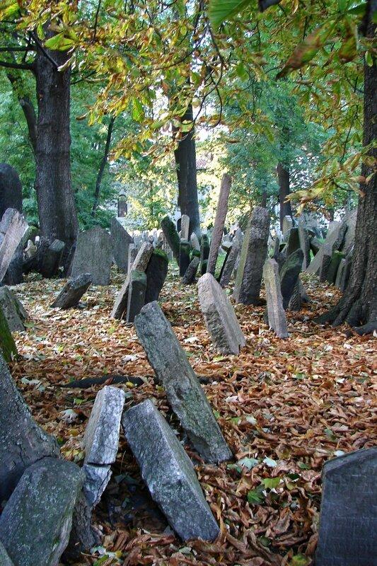 Prague cimetière juif 7