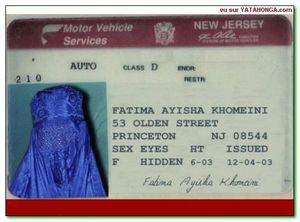 new_jersey_driving_card