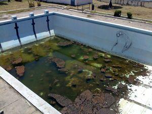 piscine_degueulasse