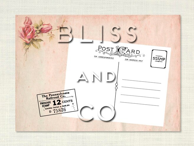 Transfert tissu textile Bliss and Co n°9