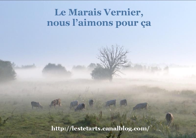 Le Marais Vernier nous l'aimons pour ça 004