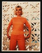 1962-06-tim_leimert_house-pucci_orange-by_barris-036-1a