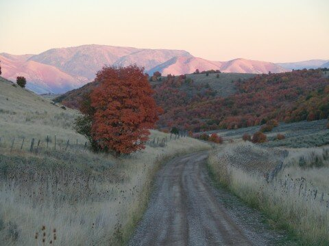 CACHE VALLEY, GREEN CANYON -AUTOMNE