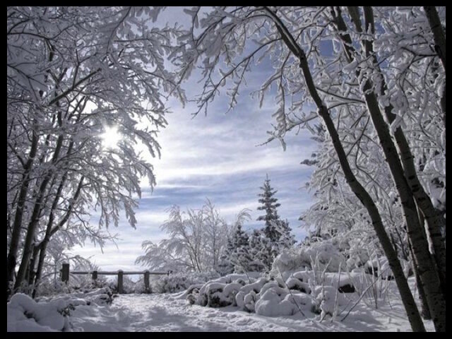 paysage_hiver_3