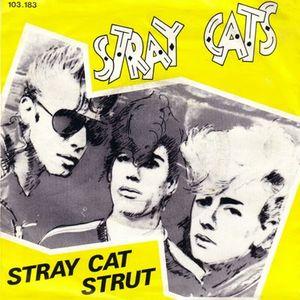 stray_cats