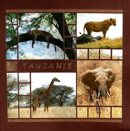 Tanzanie_4x4