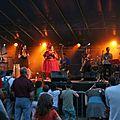 Garden guinguettes festival (joigny)