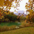 Ambiance aux reflets d'automne