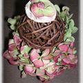 rose des bois 052_modifié-1