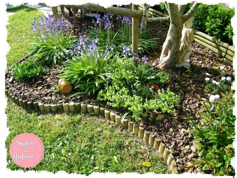 Jardin mi avril 2015 (4)