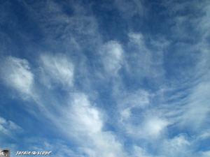 Les Cirrus, nuages de haute altitude