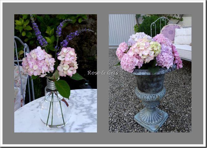 bouquets d'hortensias