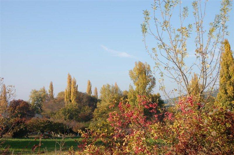L 39 automne et sa palette de couleurs ma passion photo - L automne et ses couleurs ...