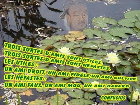 confucius_citation5