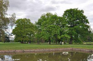 Parc-de-Schoppenwihr-20
