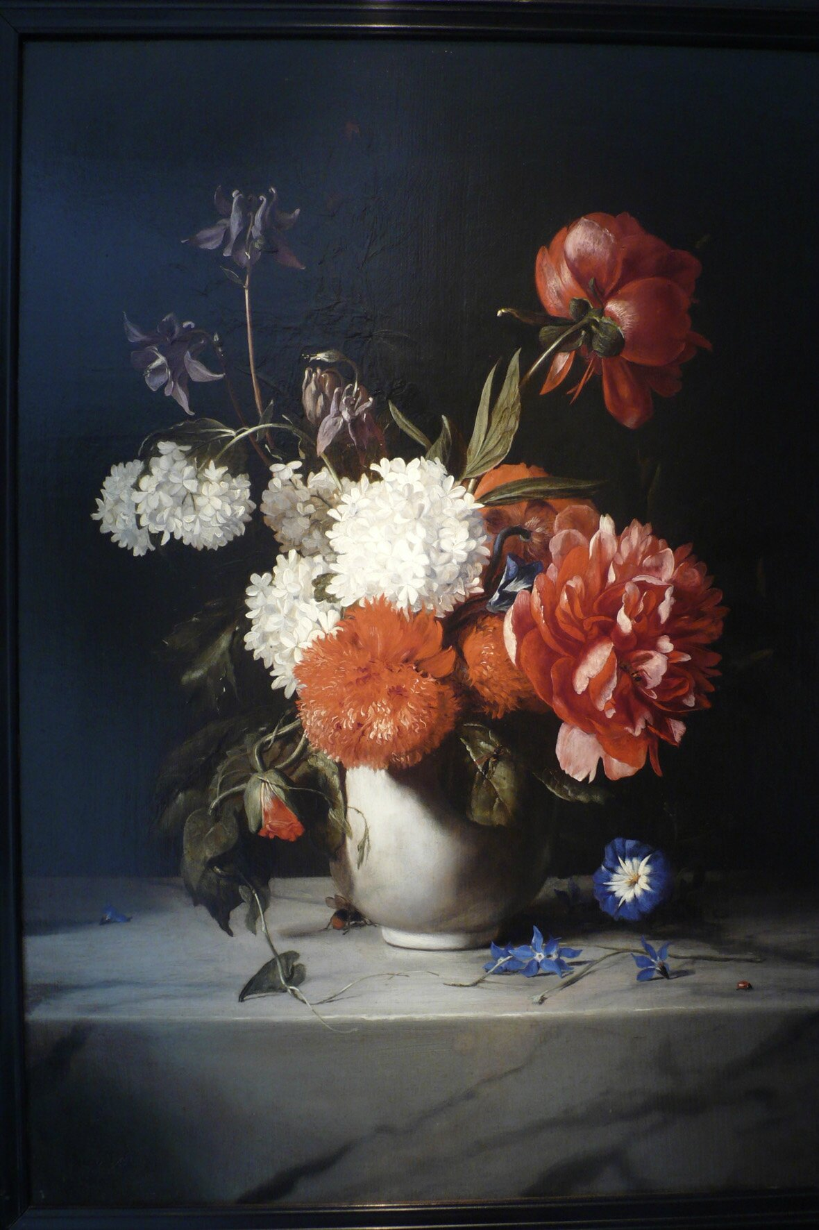 Exhibition Exploring The Evolution Of Dutch Flower Painting Over The Course Of Two Centuries