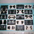 Voici l'ensemble des productions de la classe 2 (ps) exposées dans le couloir l'école
