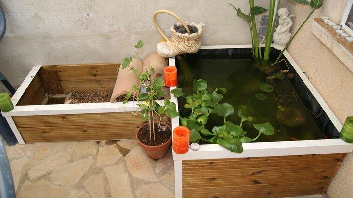 Bassin exterieur hors sol recup ration et transformation for Bassin poisson exterieur hors sol