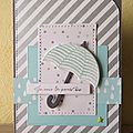 Stampin up cartes et carnet de notes