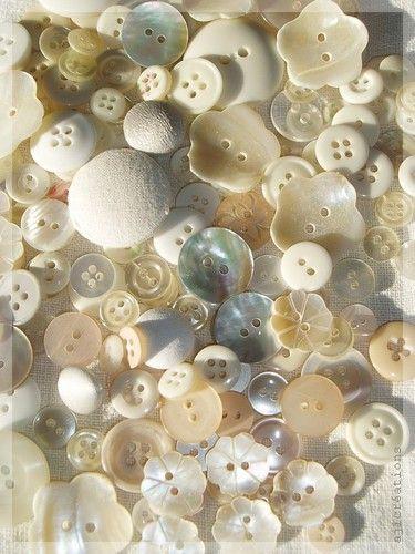 Collection de boutons Marimerveille