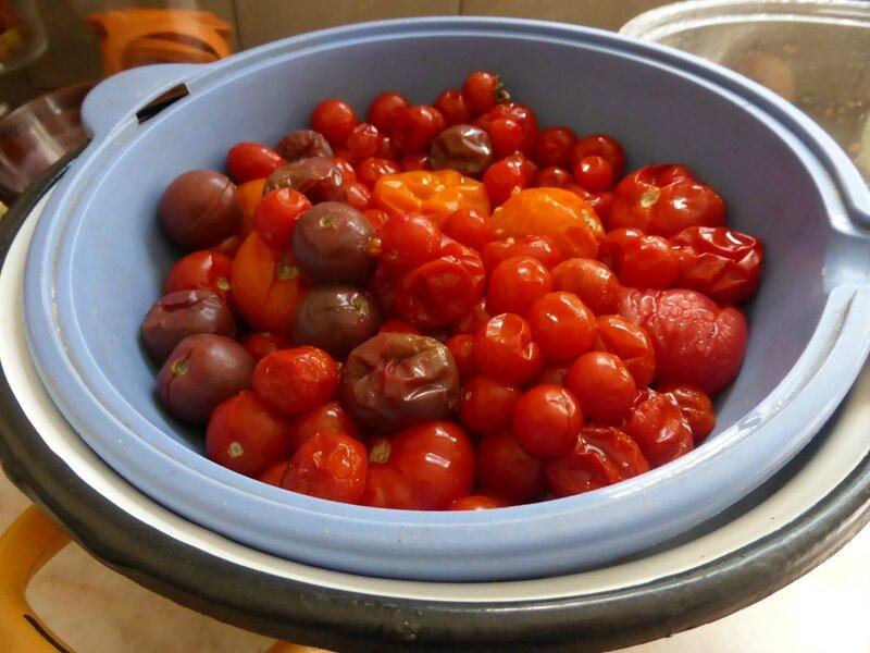 5-tomates (surgelées) (2)