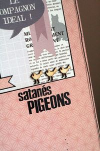 13_02_11_satans pigeons_dtail2