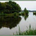 Lac 29061510