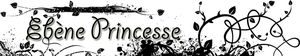 banni_re_Eb_ne_Princesse