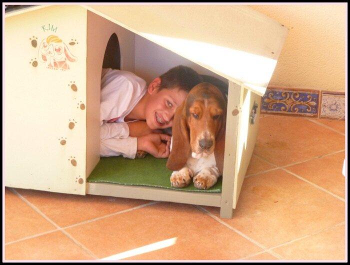 Le meilleur ami du chien Mimi - Cousons causons